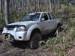nismogones 2003 Nissan Frontier Regular Cab