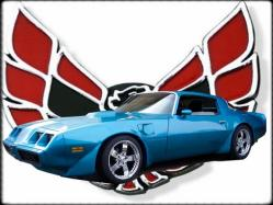 70RSSS396s 1979 Pontiac Trans Am