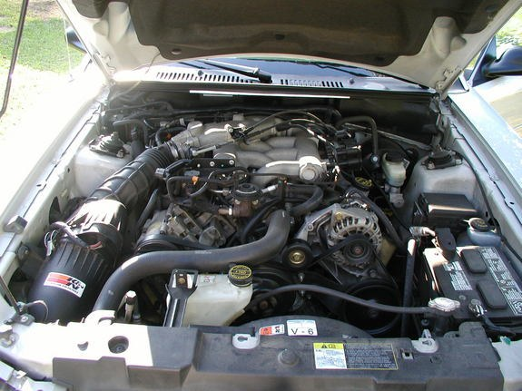 Another BabyBoi741 2002 Ford Mustang post... - 8006435