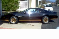 jproz1167s 1982 Pontiac Trans Am