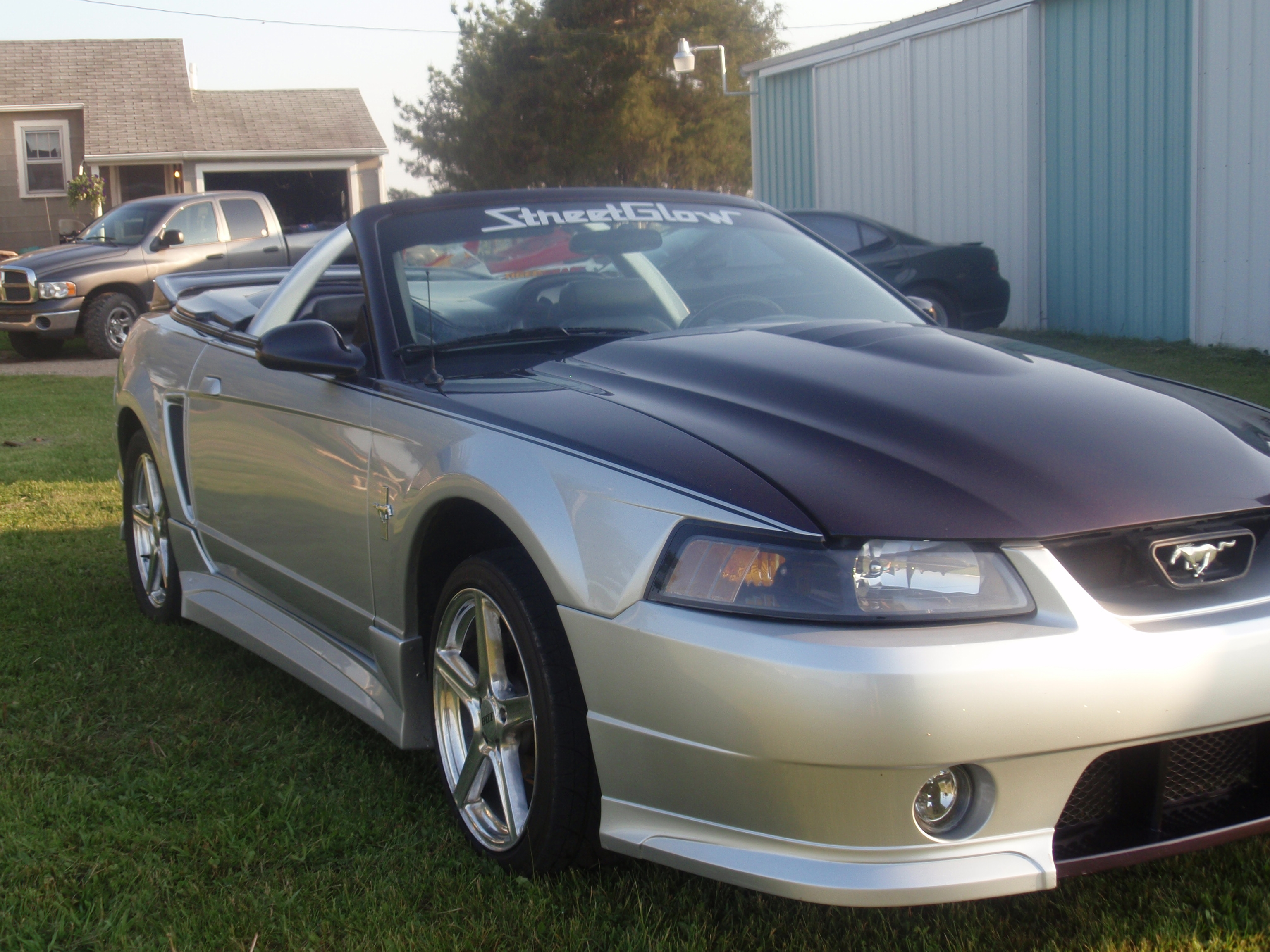 Another ToplessStangGirl 2001 Ford Mustang post... - 8536678