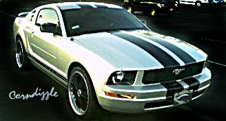 Another corndizzle25 2005 Ford Mustang post... - 8207888