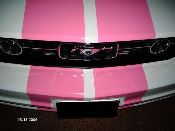 StangChick06's 2006 Ford Mustang