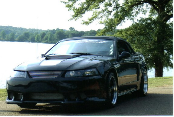 martym03stang 39 s 2003 ford mustang in boiling springs sc. Black Bedroom Furniture Sets. Home Design Ideas