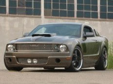 Another -boss- 1969 Ford Mustang post... - 8385517