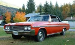 Abodybirds 1964 Buick Skylark