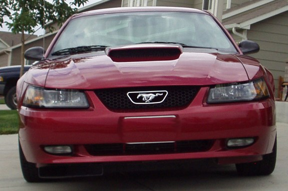Another Colorado_Mustang 2003 Ford Mustang post... - 8597174