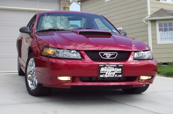 Another Colorado_Mustang 2003 Ford Mustang post... - 8597180