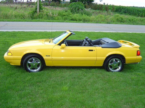 Another 02transamws6 1993 Ford Mustang post... - 8620444