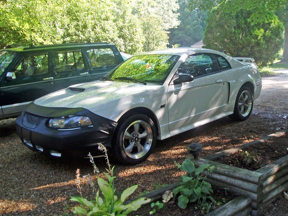 Another exLT1to01GT 2001 Ford Mustang post... - 8627749