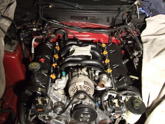 nitrous97 1997 Ford Mustang 8814111
