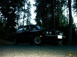 tatsandstuffs 1981 BMW 3 Series
