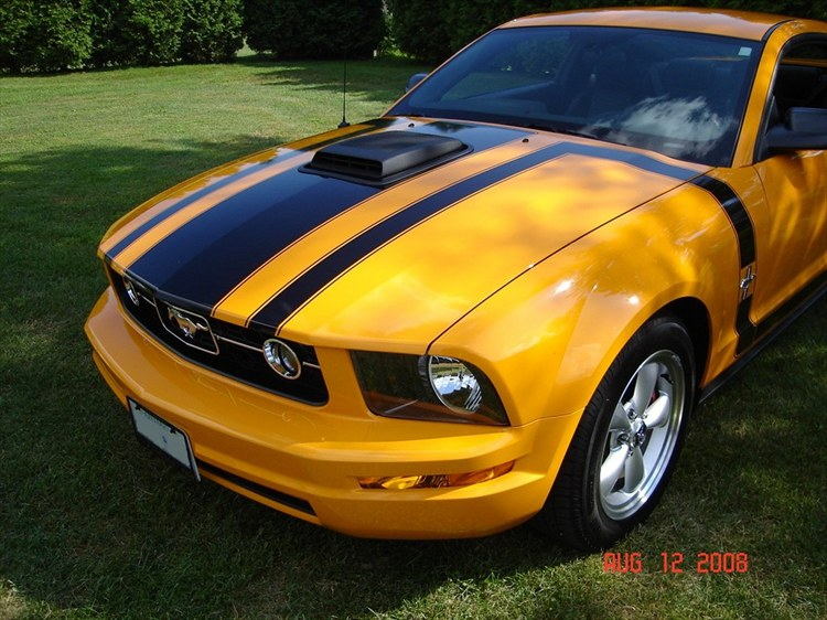 Another edsel475 2007 Ford Mustang post... - 8726420