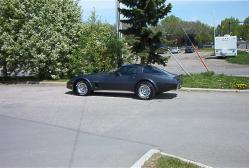 flinflon82 1982 Chevrolet Corvette