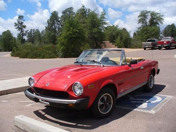 tofudog 1979 fiat spider specs, photos, modification info at cardomain