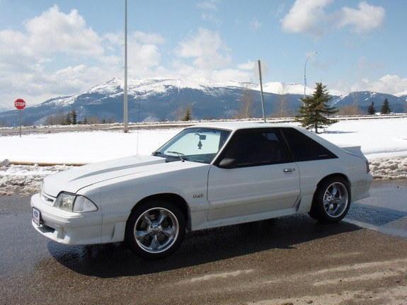 Another oxfordwhiteboy 1988 Ford Mustang post... - 8864533