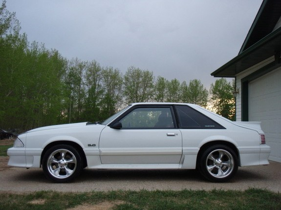 Another oxfordwhiteboy 1988 Ford Mustang post... - 8864534
