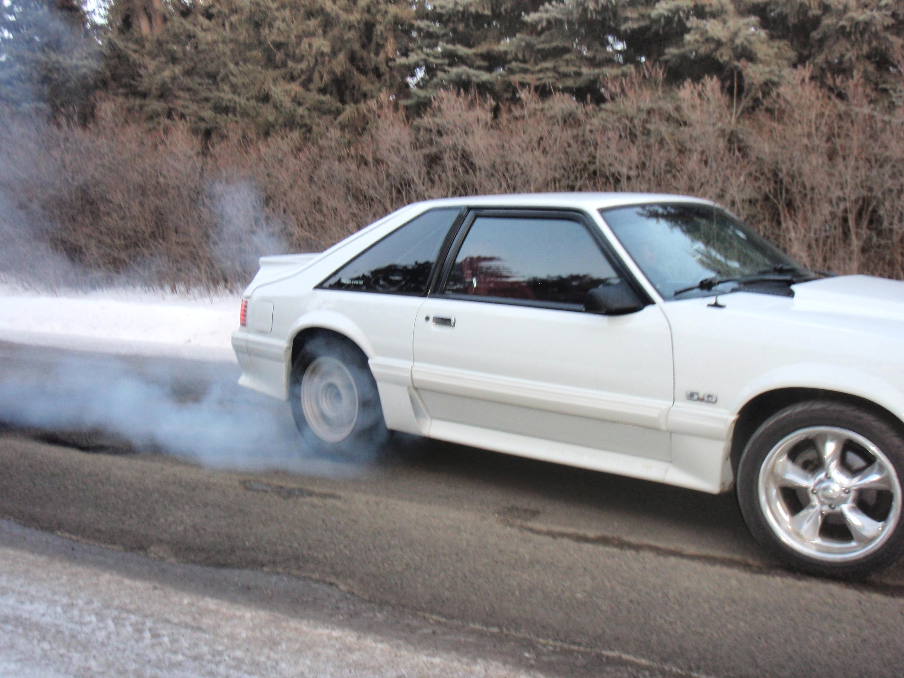 Another oxfordwhiteboy 1988 Ford Mustang post... - 8864536