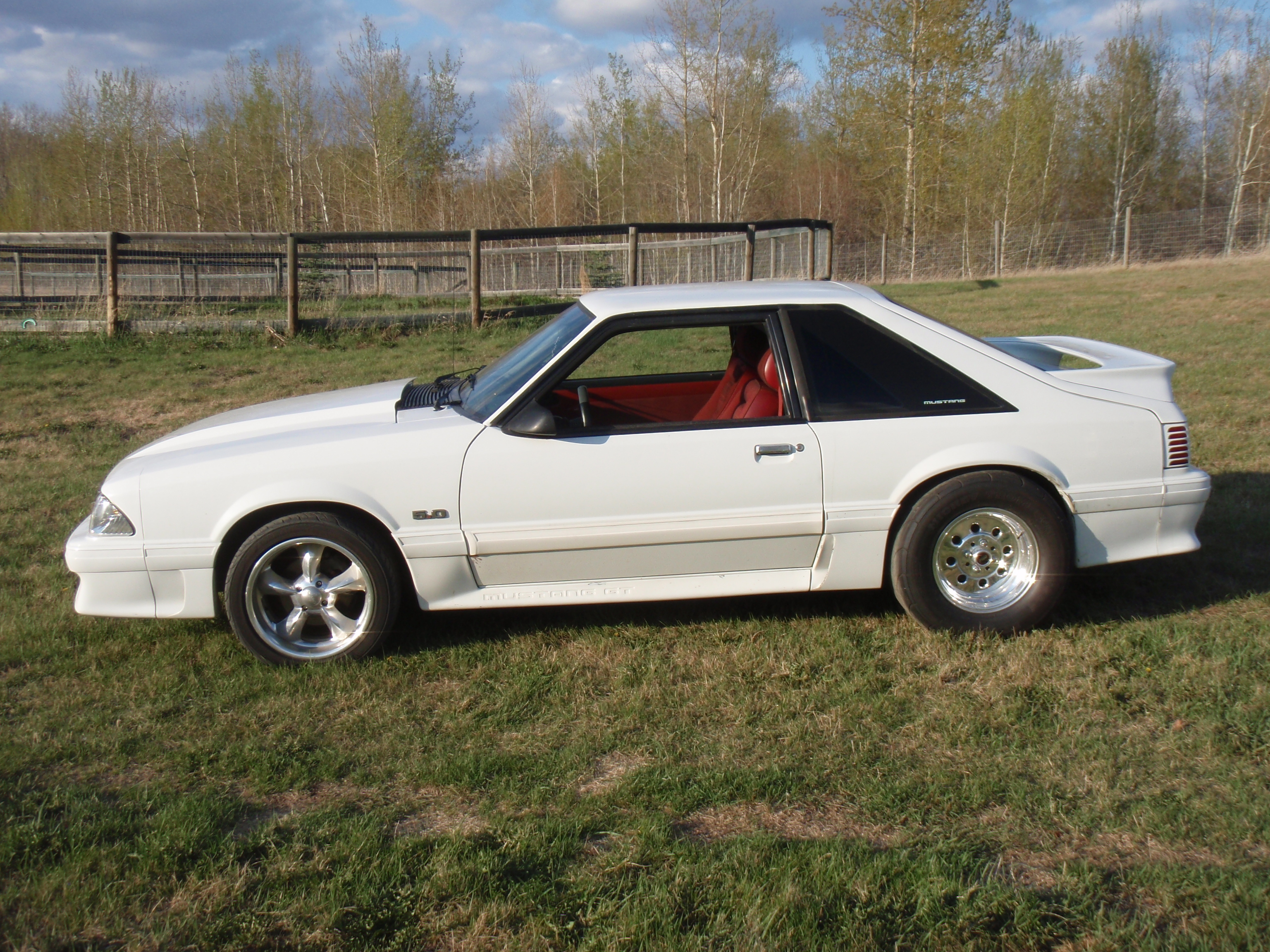 Another oxfordwhiteboy 1988 Ford Mustang post... - 8864537