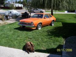 pintobobster 1975 Ford Pinto