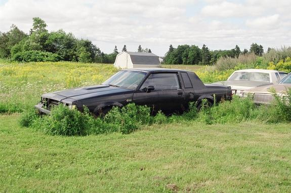 cgodin1987 s 1984 buick grand national page 5 in moncton nb
