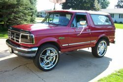 dabroncs 1995 Ford Bronco