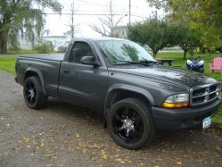 nef_4 2004 Dodge Dakota Regular Cab & Chassis
