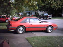 tsfields2635 1985 Ford Mustang