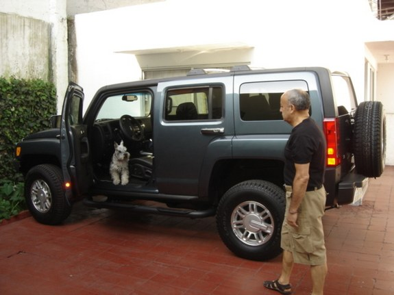 Another baby_hum 2006 Hummer H3 post... - 8995822