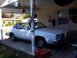 tigersweetie17s 1979 Oldsmobile Cutlass Calais