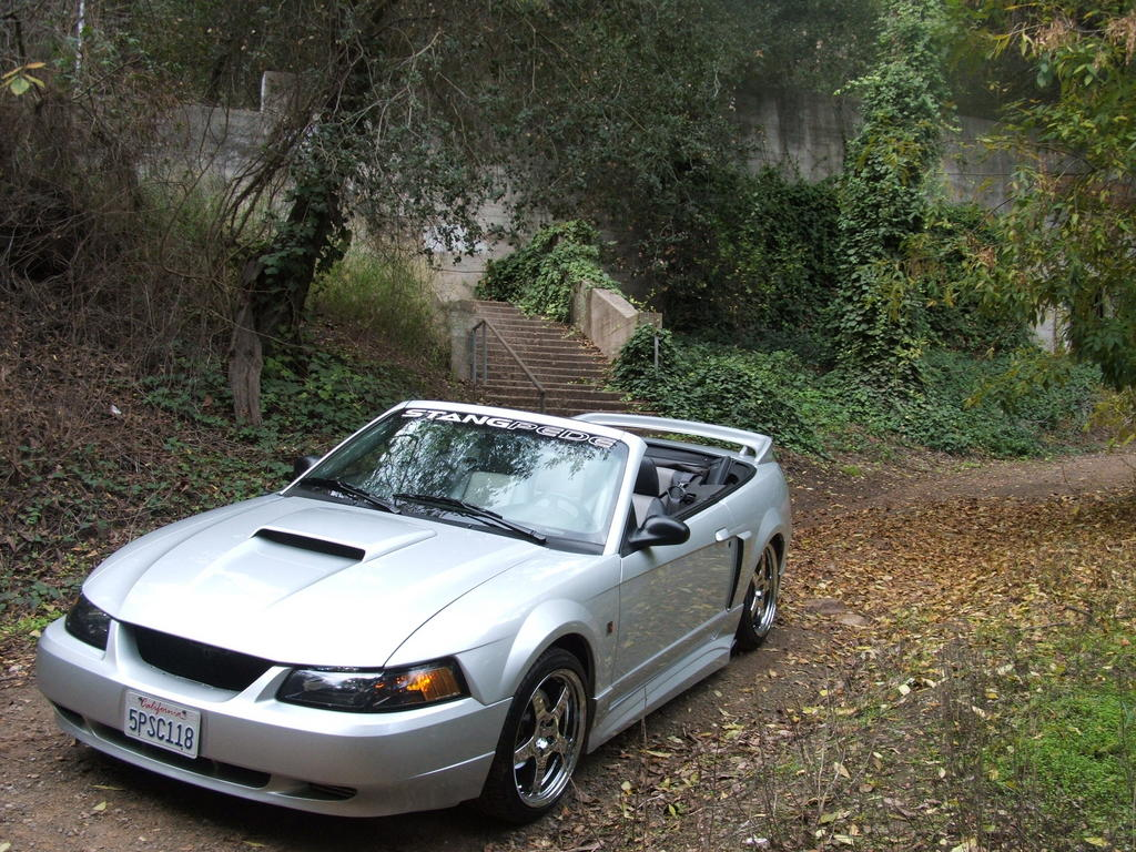 Another bloodymustang 2005 Ford Mustang post... - 8996214