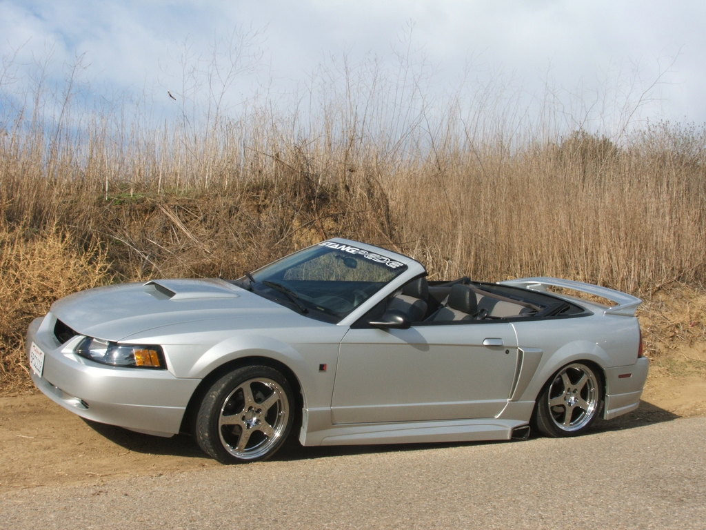 Another bloodymustang 2005 Ford Mustang post... - 8996233