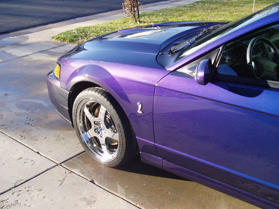 04mystic's 2004 Ford Mustang