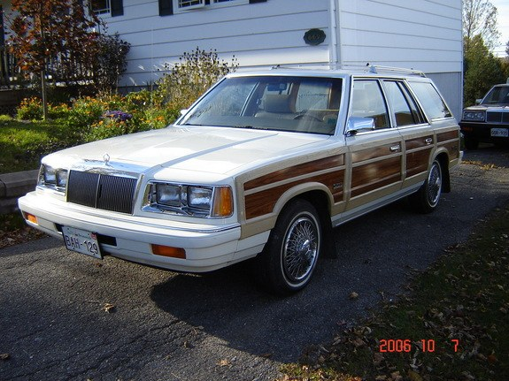 petsach 1987 Chrysler Town & Country