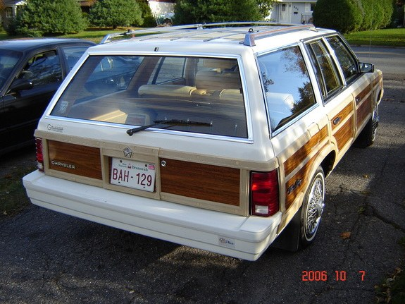petsach 1987 Chrysler Town & Country 9083996