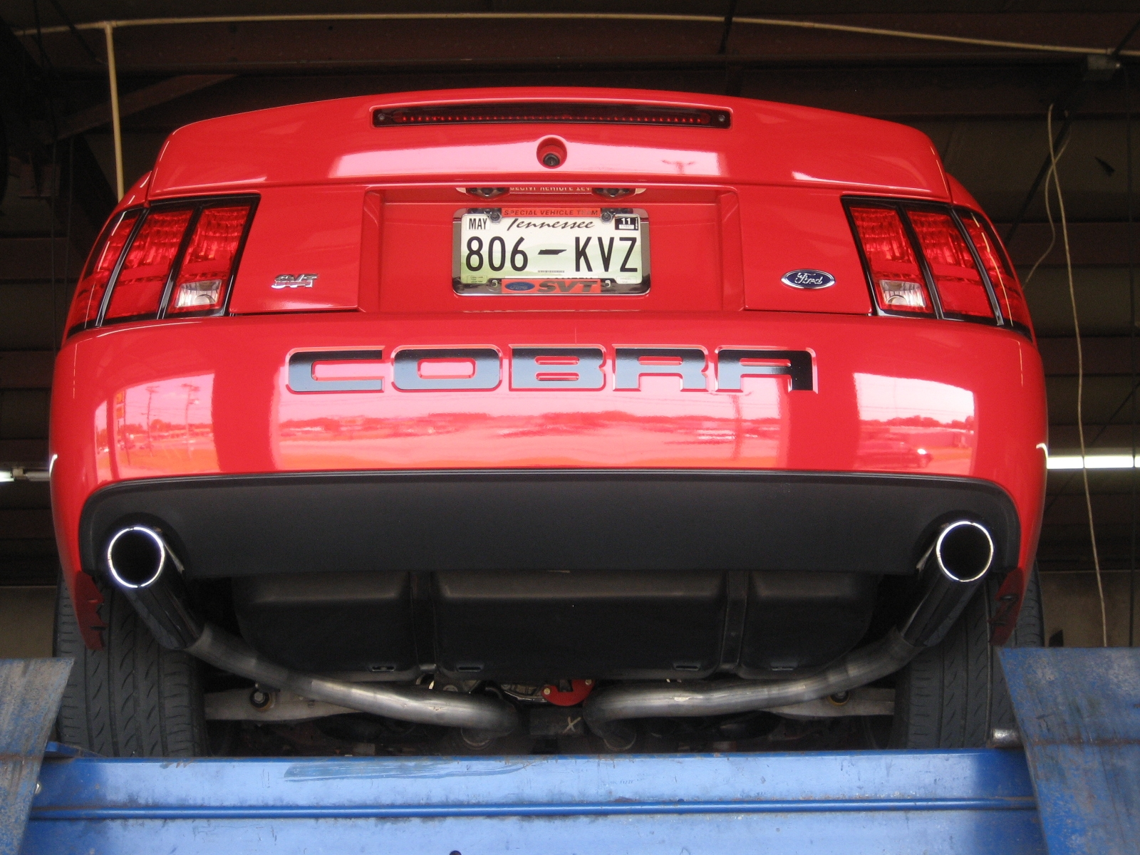Cobra_im 2003 Ford Mustang 9235072