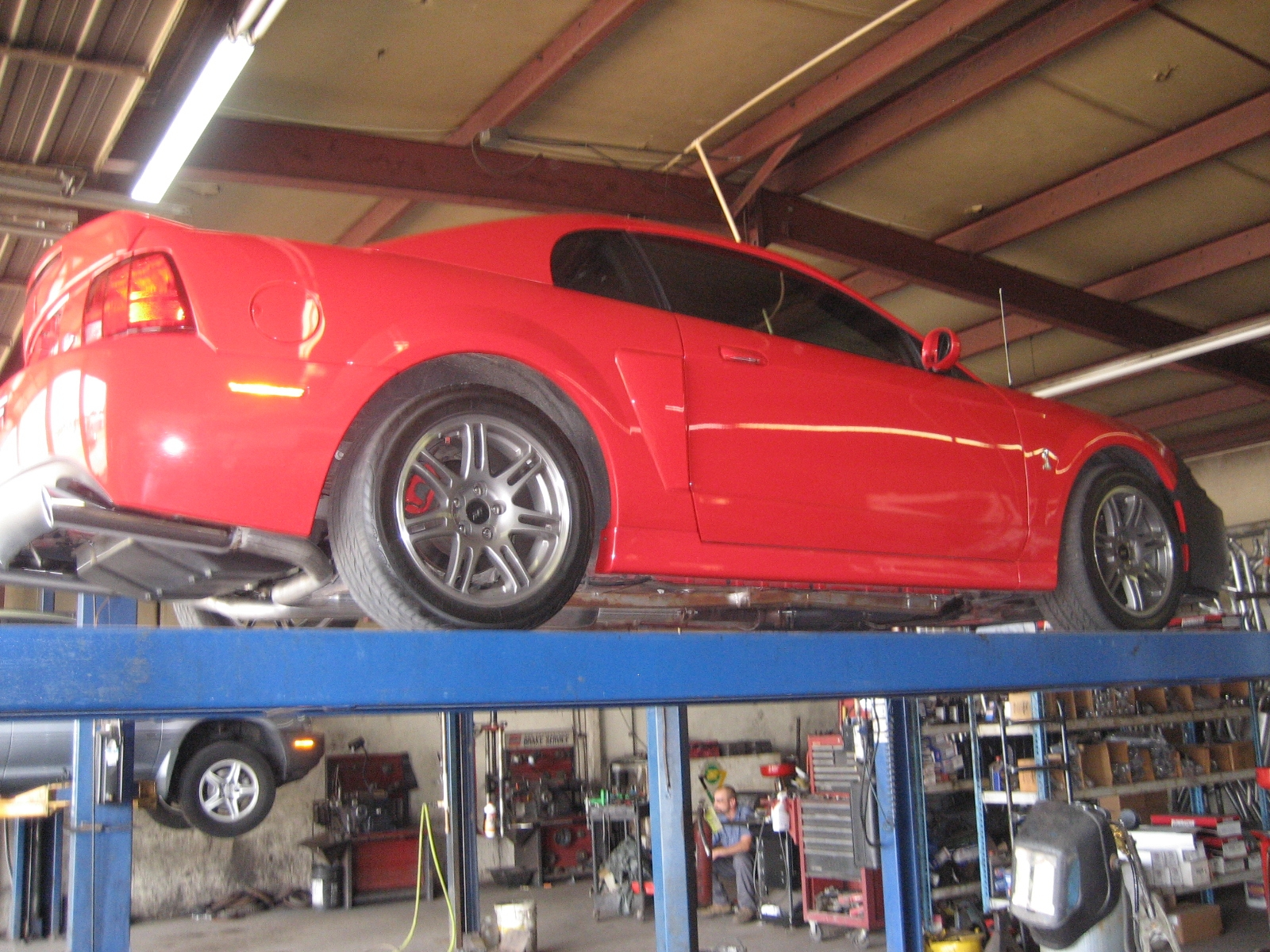 Cobra_im 2003 Ford Mustang 9235074