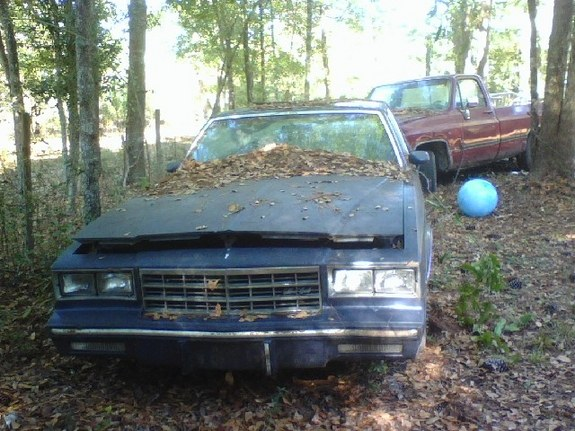 Another stangerhayes 1984 Chevrolet Monte Carlo post... - 9217118
