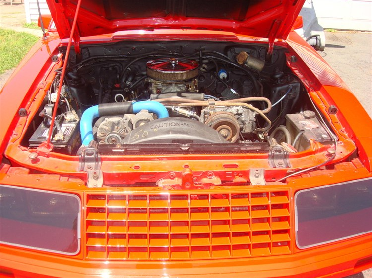 Another 664257 1982 Ford Mustang post... - 10302273