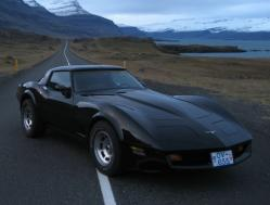 Tonicorvettes 1981 Chevrolet Corvette