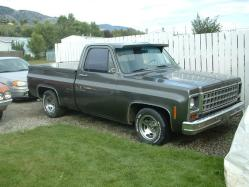 elcools 1980 Chevrolet C/K Pick-Up