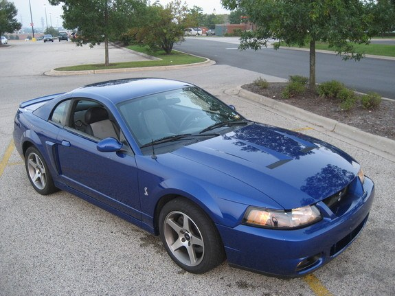 SVTBrian 2003 Ford Mustang