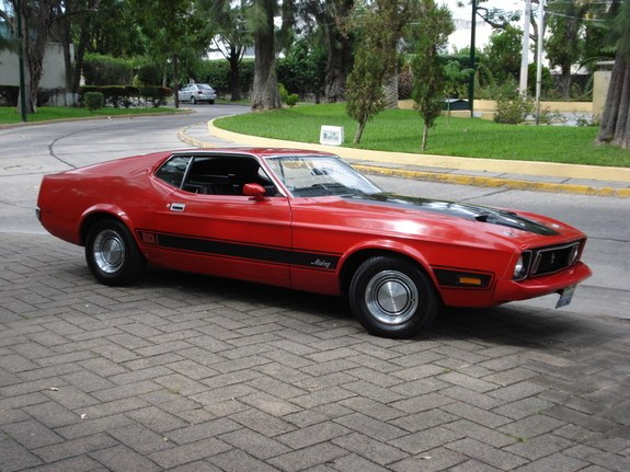 luchostang 1973 Ford Mustang 10418652