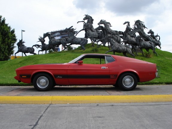 luchostang 1973 Ford Mustang 10418654