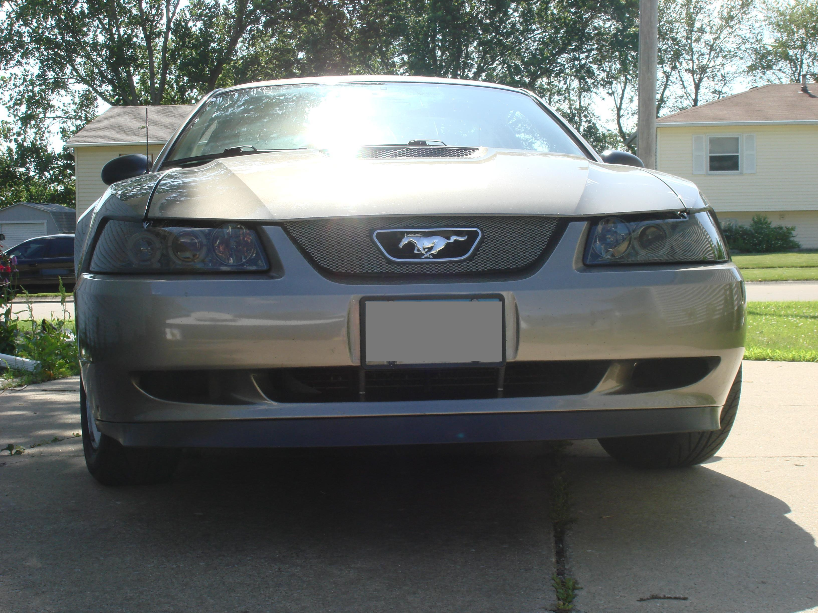 Love My Mustang S 2001 Ford Mustang In Davenport Ia
