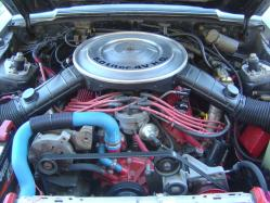 5Oh_Pony 1984 Ford Mustang