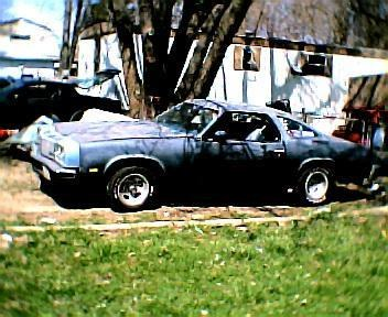 caminokid 1976 Oldsmobile 442 10507990