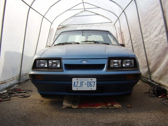 Another 300MLuva 1986 Ford Mustang post... - 10524397