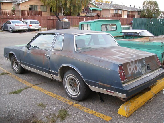 Another C_Herrmann1988 1984 Chevrolet Monte Carlo post... - 10525515