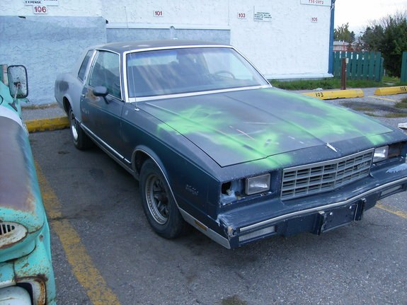 Another C_Herrmann1988 1984 Chevrolet Monte Carlo post... - 10525516